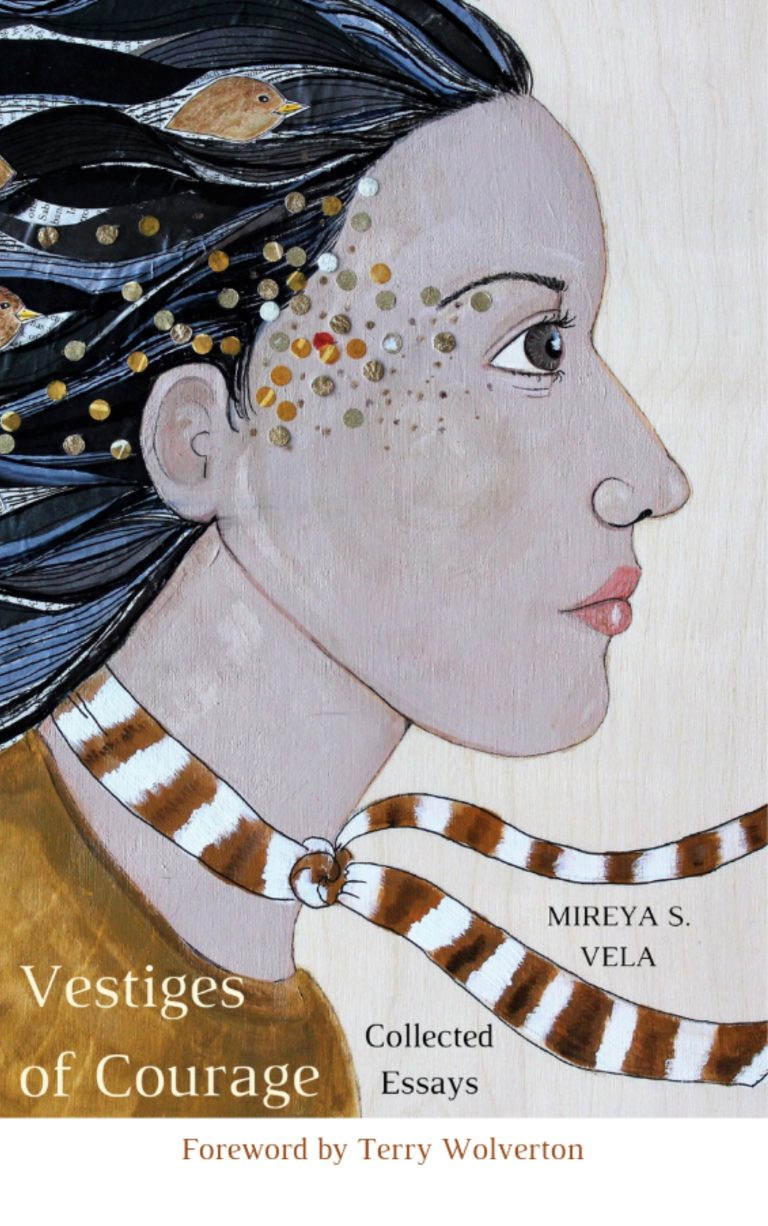 Vestiges of Courage: Collected Essays, by Mireya S. Vela